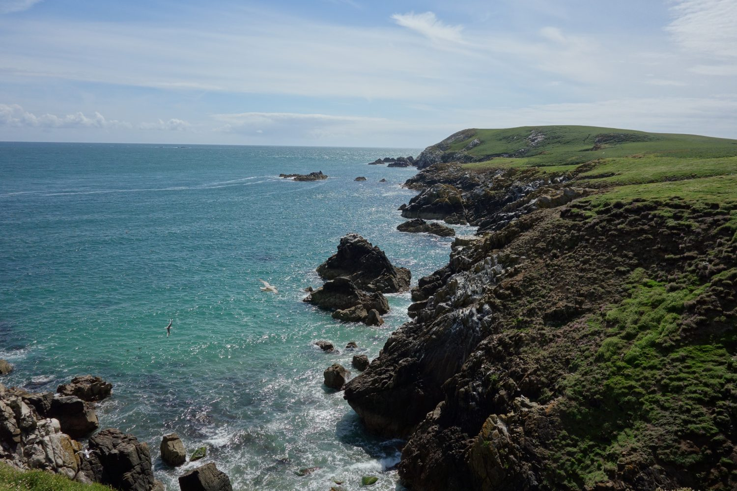 West view Saltee Island coastline